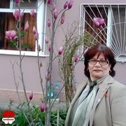 Match, danielacostea111, woman, 60 | , Romania