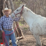 Match, Mexicano, man, 61 | , Mexico